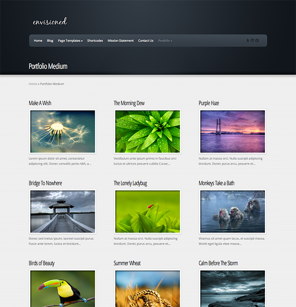 Easily Create A Video Gallery Using WordPress Plugins | Pinterest ...