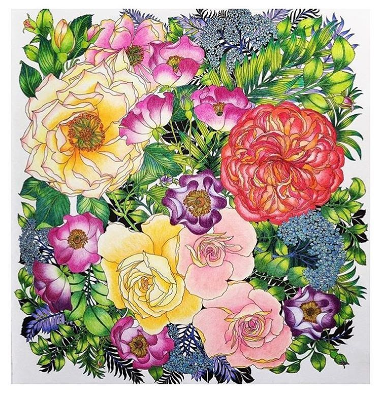 Amazing Colouring By Kino3418 From Floribunda Watercolor Flowers Flower Drawing Color Pencil Art