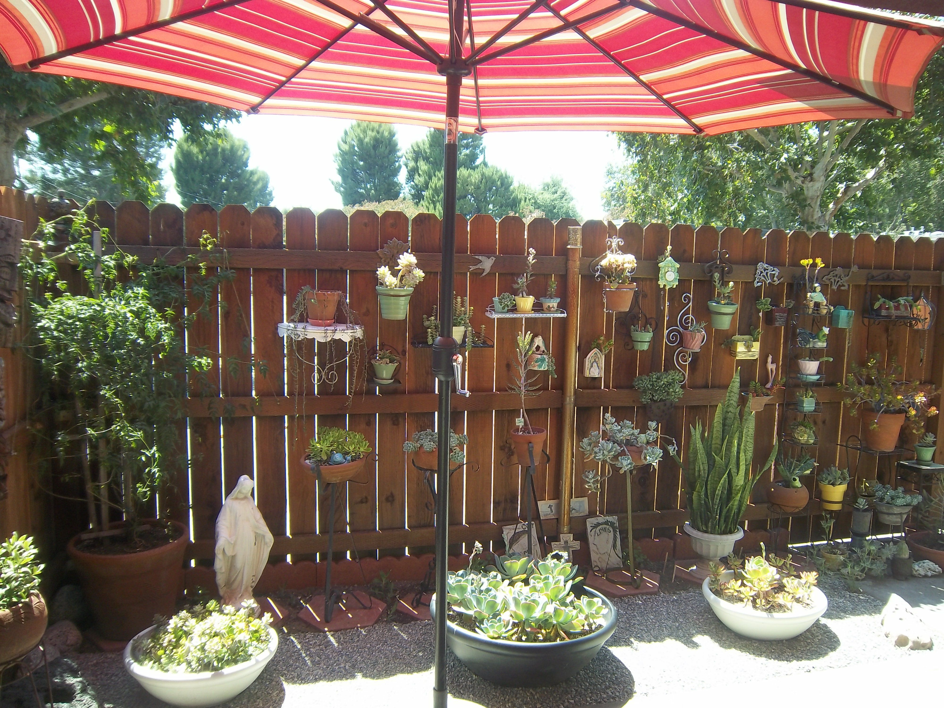 Vertical garden for small yard! Succulents save on watering ...