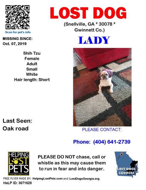 Lostdog Lady Snellville Oak Road Ga 30078 Gwinnett Co Dog