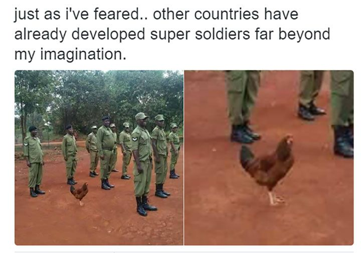 Popular Scary Chicken Meme: Funny Pictures That Will Make You Die Laughing - 11
