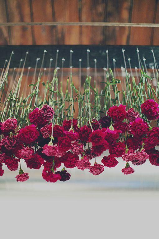 Suspended Marsala Carnations. Just Beautiful! #Marsala Weddings // Aisle Perfect