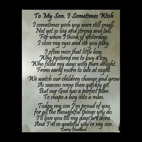 To My Son I Sometimes Wish Poem By Larry Howland This