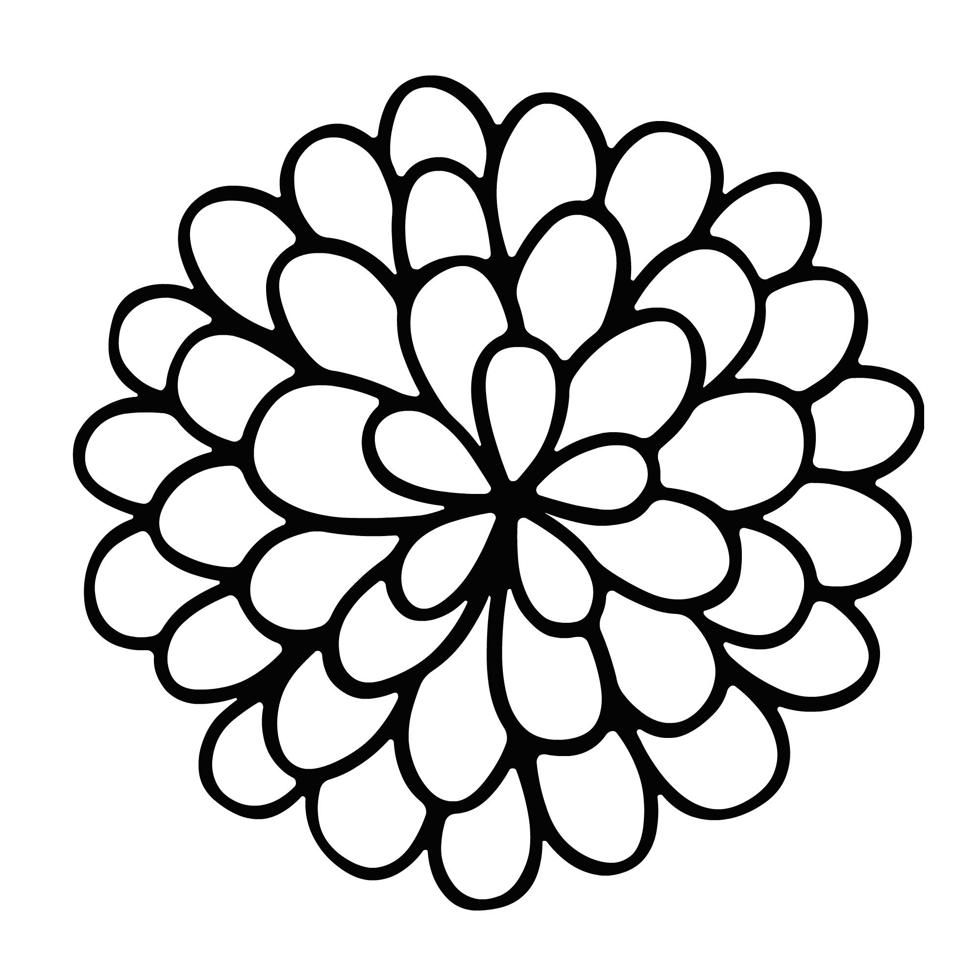 Marigold Flower Drawing Easy Sketch Coloring Page Flower Drawing