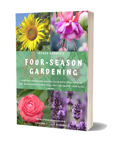 Photo of Want to create a seasonal garden full of low maintenance plants that bloom throu…