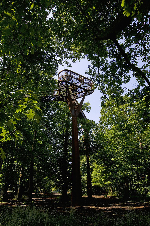 21ec78a804610f1b26135adfdb90ea19 - How High Is The Tree Top Walk At Kew Gardens