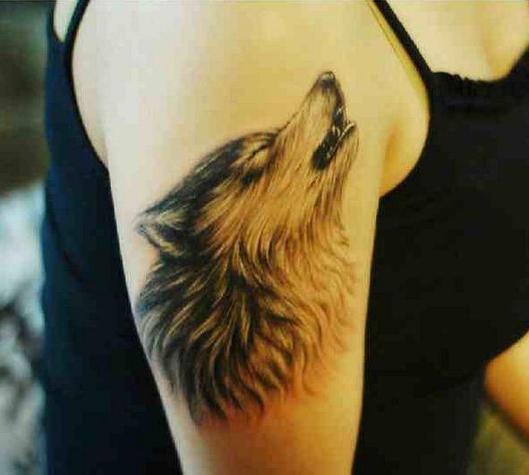 howling wolf temporary tattoo wolf wolf hunde und. Black Bedroom Furniture Sets. Home Design Ideas