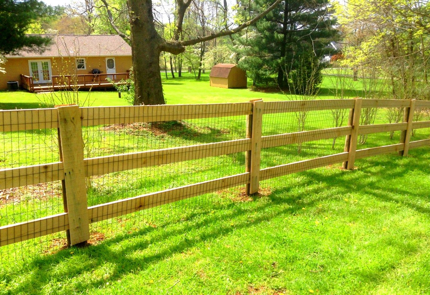 Paddock Horse Board Pasture Fence Designs Fence Posts Are Made Of Treated Pine Fence Boards Are Made Of Oak Ideal Fenc Fence Design Horse Fencing Dog Fence