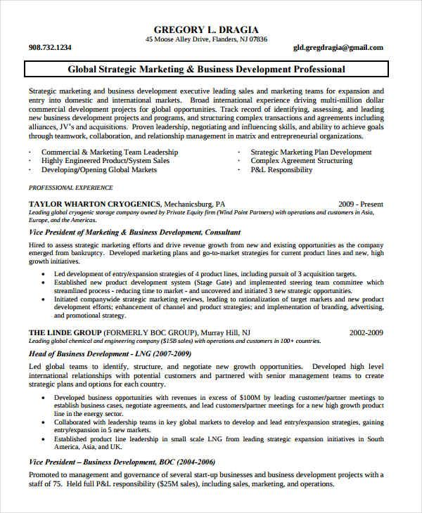Marketing Business Development Resume , Marketing Resume Samples - business development resume sample