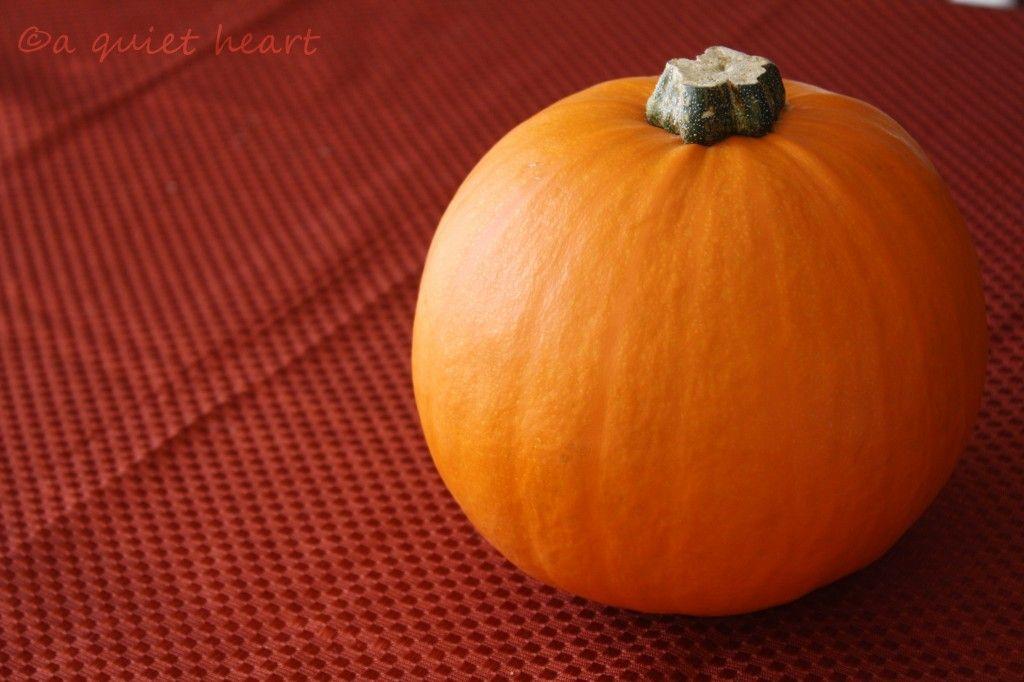 Raising Homemakers — Teaching and preparing our daughters in the art of homemaking...using pie pumpkins instead of canned pumpkin.