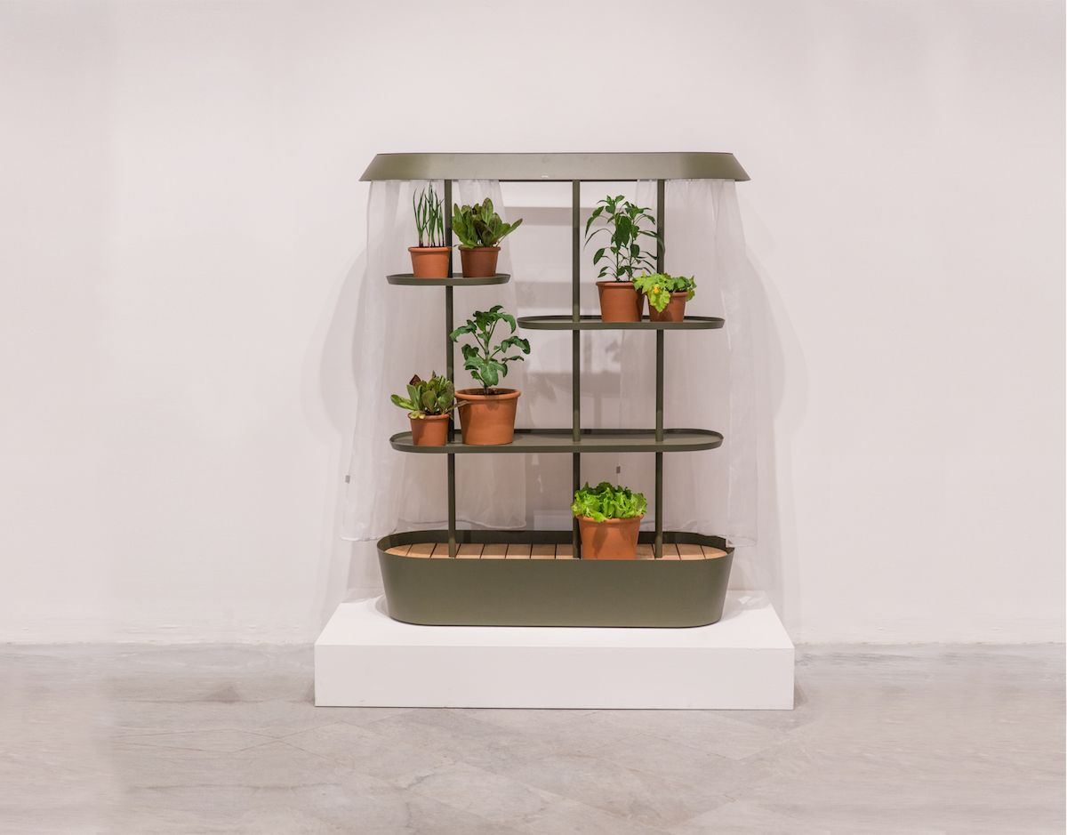 Flatpack Greenhouse