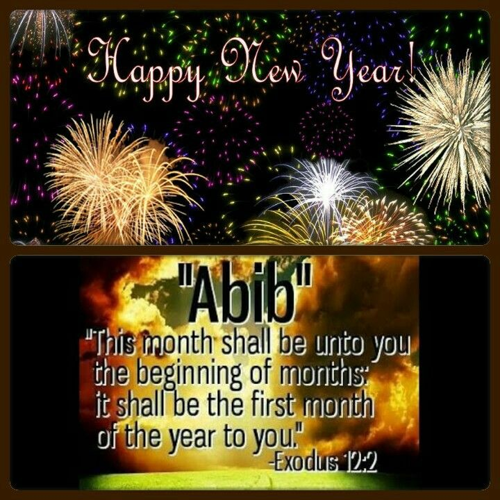 Happy New Year Abib Read Bible Tribe Of Judah Months In A Year