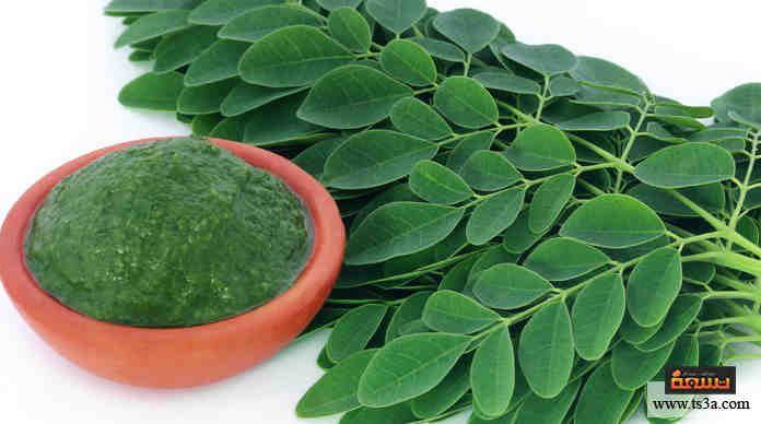 توصف عشبة المورينجا بأنها الدواء المتكامل للعلاج من الكثير من الأمراض والتخسيس بالمورينجا أحد استخدامات هذه Benefits Of Moringa Leaves Moringa Moringa Leaves