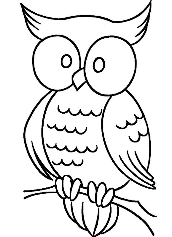 Drawn Owl Simple Pencil And In Color Drawn Owl Simple Owl Coloring Pages Easy Coloring Pages Cartoon Coloring Pages