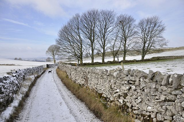 'English Country Lane in Snow,' Hartington, Derbyshire, England. By Keartona, via Flickr.
