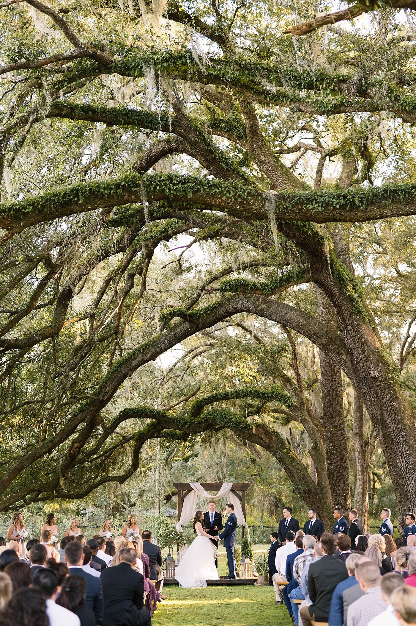 Ocala Fl Wedding Outdoor Wedding Venues Florida Wedding Oak Tree Wedding