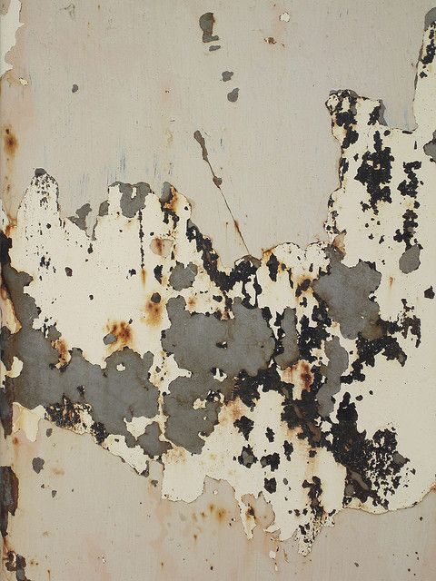 Rusty Peeling Paint Texture by Kathryn Wells's Porfolio on Flickr.
