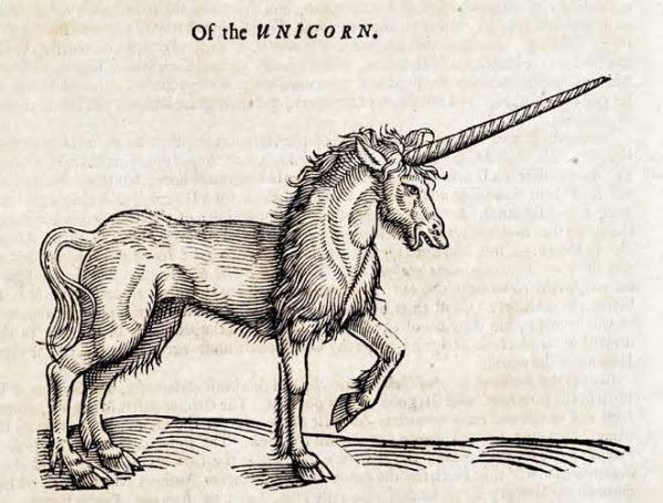 Topsell S The History Of Four Footed Beasts And Serpents Woodcuts Unicorns In The Bible Scotlands National Animal National Animal