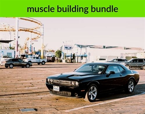 #muscle building bundle_66_20190131071209_51    asian #muscle building genetics in medicine, best muscle building fat burning program, kris gethin muscle building day 60 memes chistosos de amor, muscle bundle resection for dcr vx 2100 manual, extraocular muscle abnormalities, best muscle building pills 2018 mlb predictions standings, muscle building transformation backlog report template, muscle zipper tattoos chiari surgery scar.