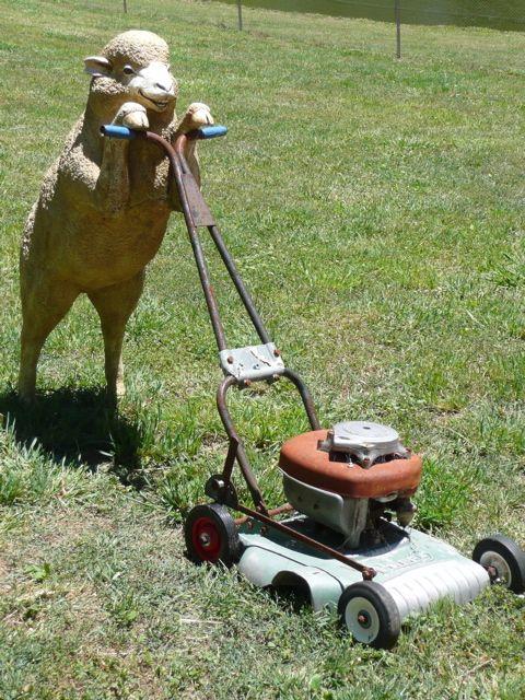 Husqvarna 7021p 21 Inch 160cc Honda Gcv160 Gas Powered 3 N 1 Push Lawn Mower With High Rear Wheels Carb Compliant Lawn Mower Push Lawn Mower Mower