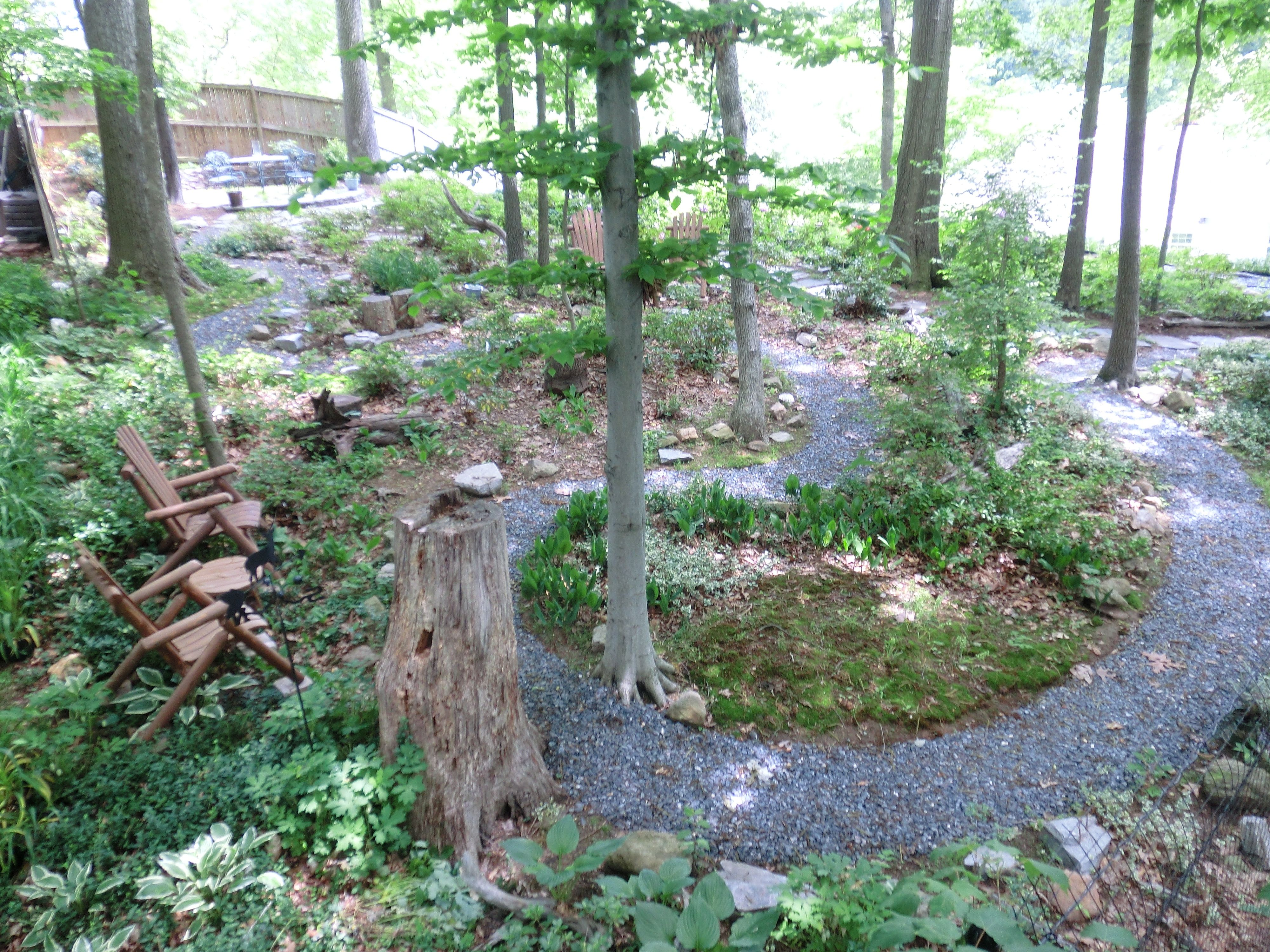 gravel pathway wooded landscape