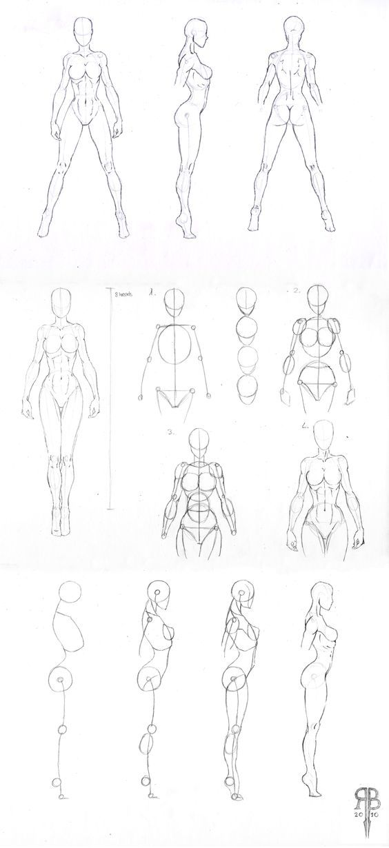 Pin by Rachel Sama on Drawings Tuto | Pinterest | Anatomy, Art ...