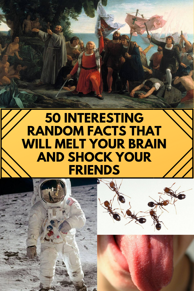 50 Random Facts That Seem Fake But Aren T Facts Fun Facts Interesting Things