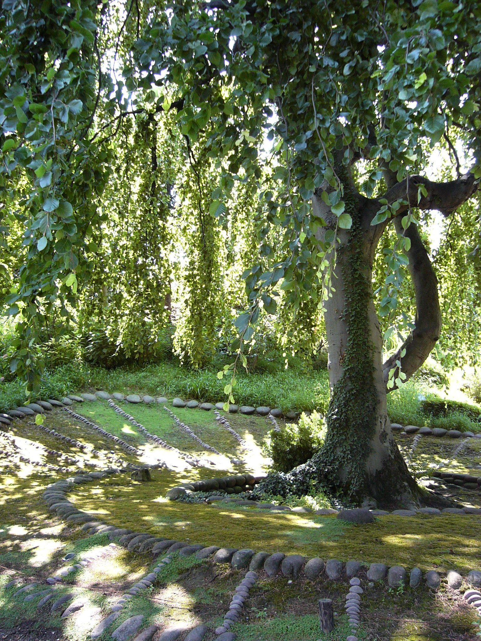 Jardin albert khan boulogne billancourt jardins - Jardin japonais boulogne billancourt ...