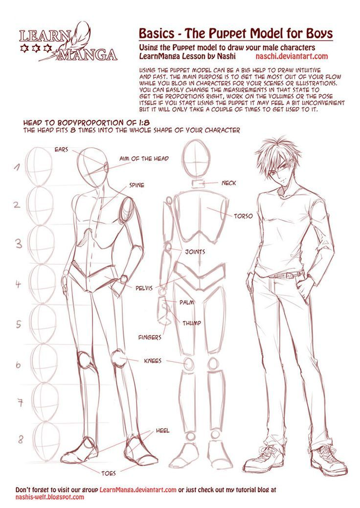 Learn Manga Basics: The Male Puppet by Naschi on deviantART ...