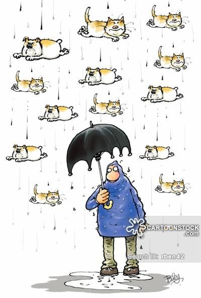 Raining Cats And Dogs Artist Besley Rupert Humor Rain