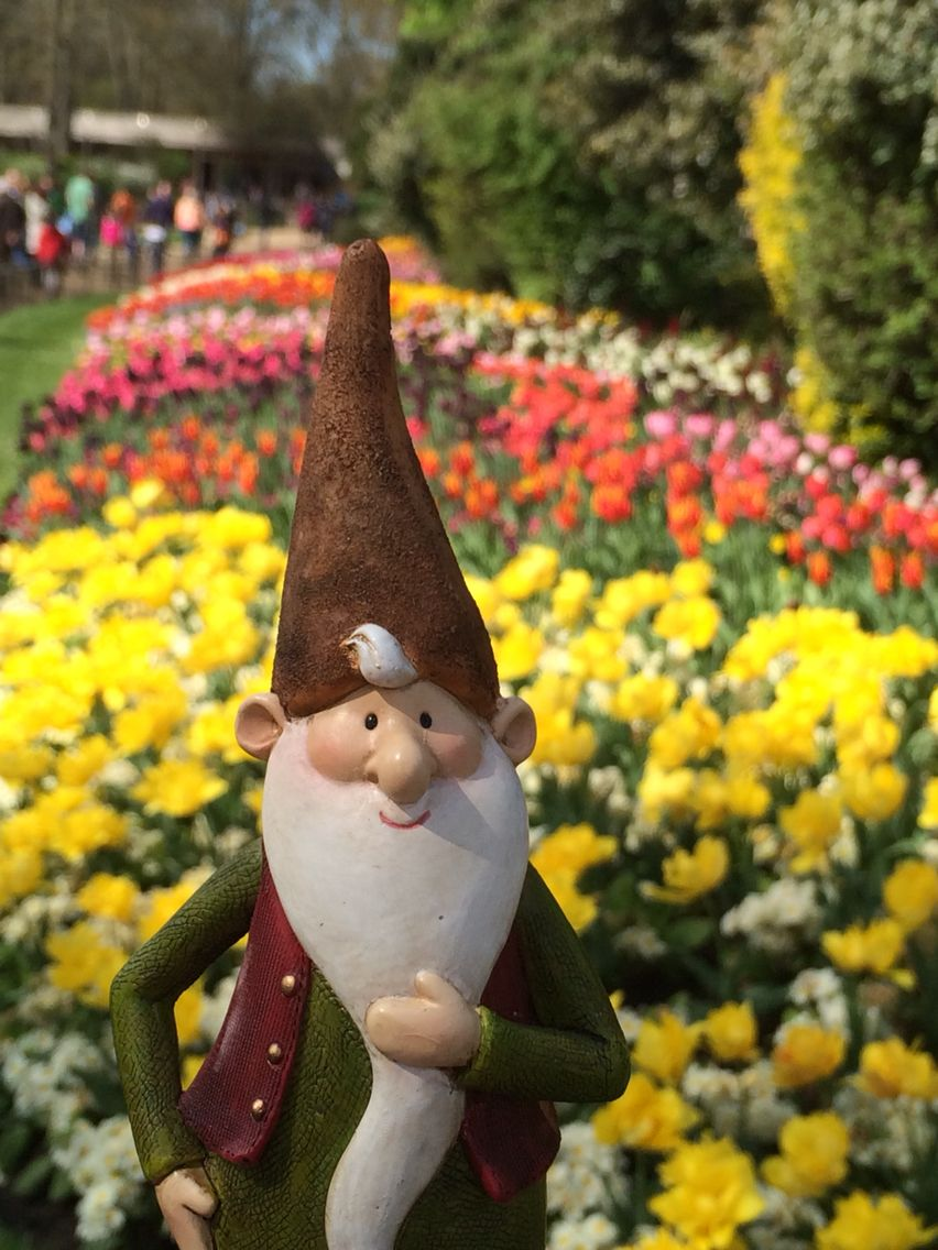 Monty Visits The Spring Flowers At St James Park London Gnomes