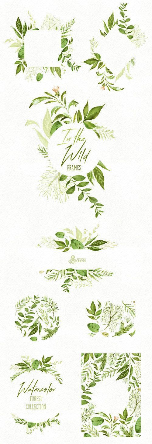 In the Wild. Watercolor floral Frames, arrangements, leaves, wedding ...