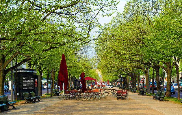 Unter den Linden Under the Lime Tree. Berlin's most famous street