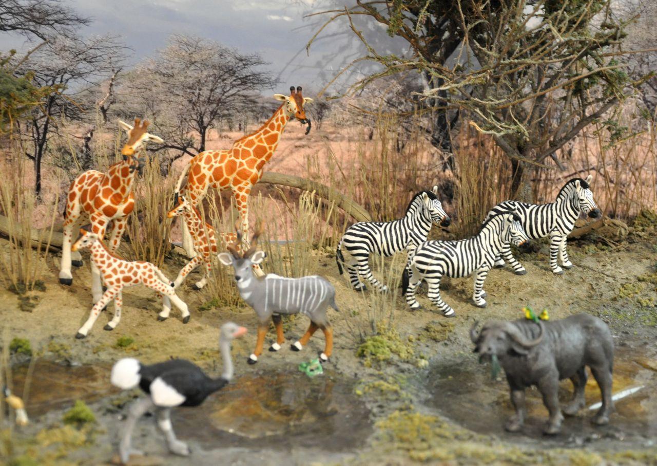 Great Safari Ltd Dioramas At The Toy Fair Part 1