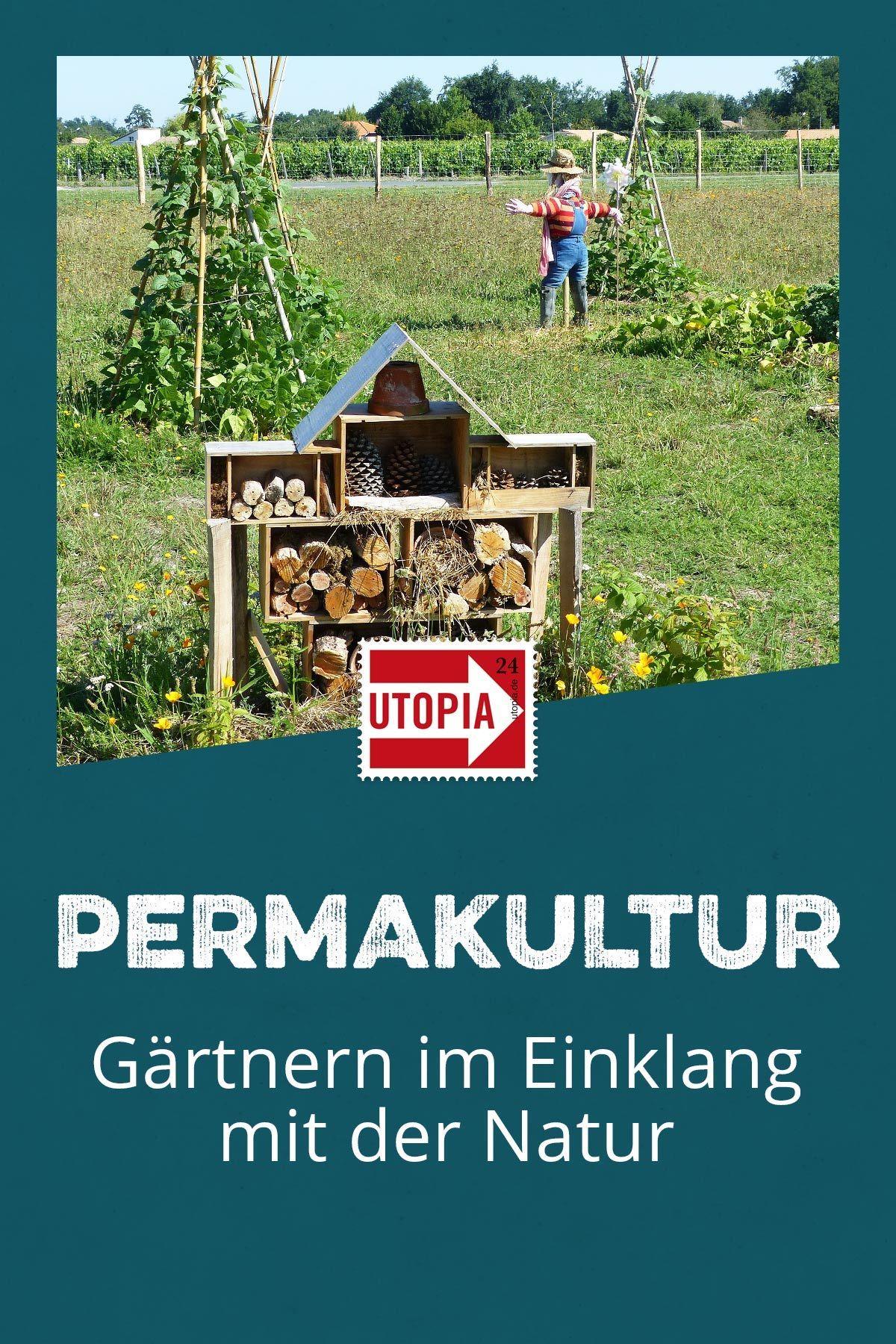 Photo of Permakultur: hagearbeid i harmoni med naturen – Utopia.de