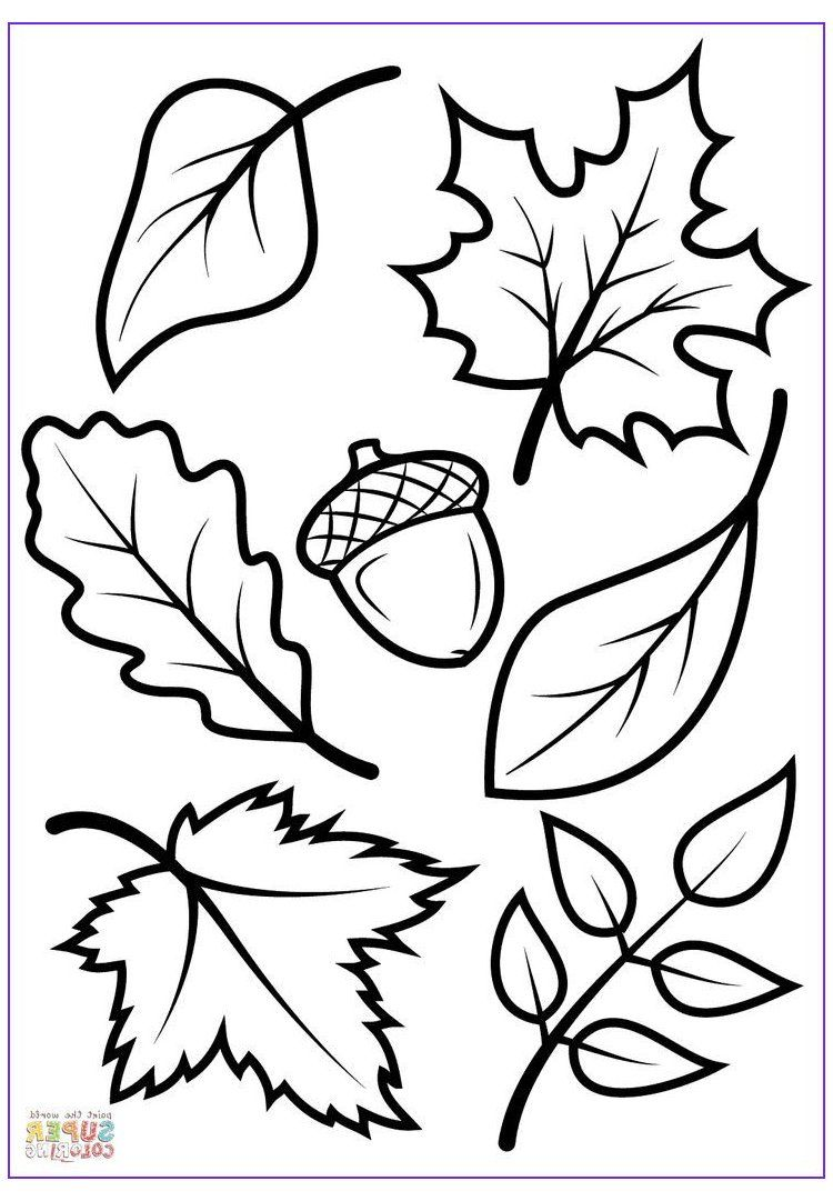 16++ Printable fall leaf coloring pages information