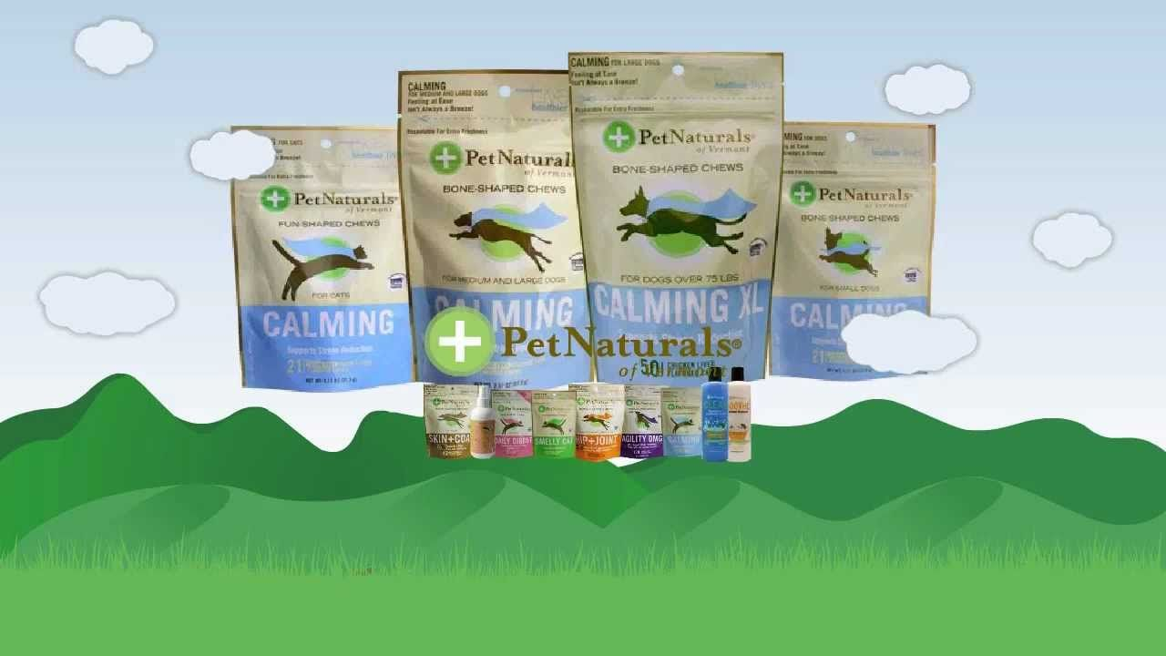 Calming chews by pet naturals of vermont pets nature calm