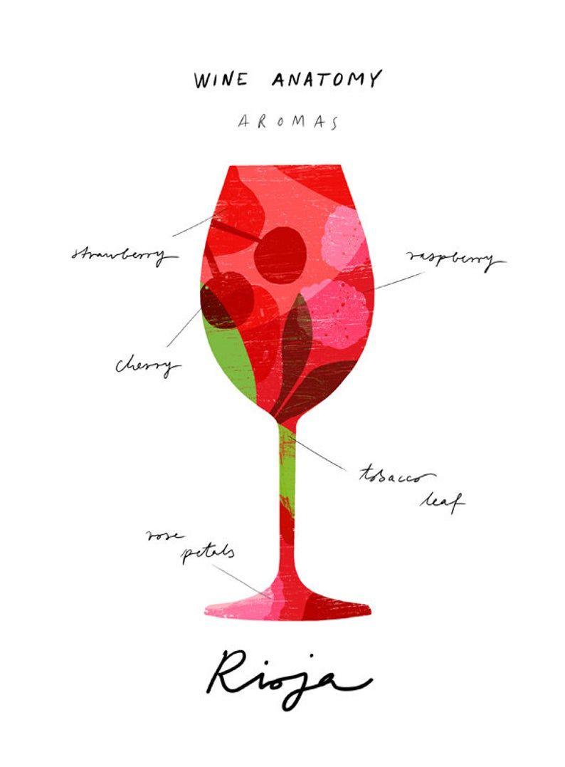 Rioja Wine Art Wine Anatomy Print Wine Illustration Etsy In 2020 Wine Art Wine Design Wine