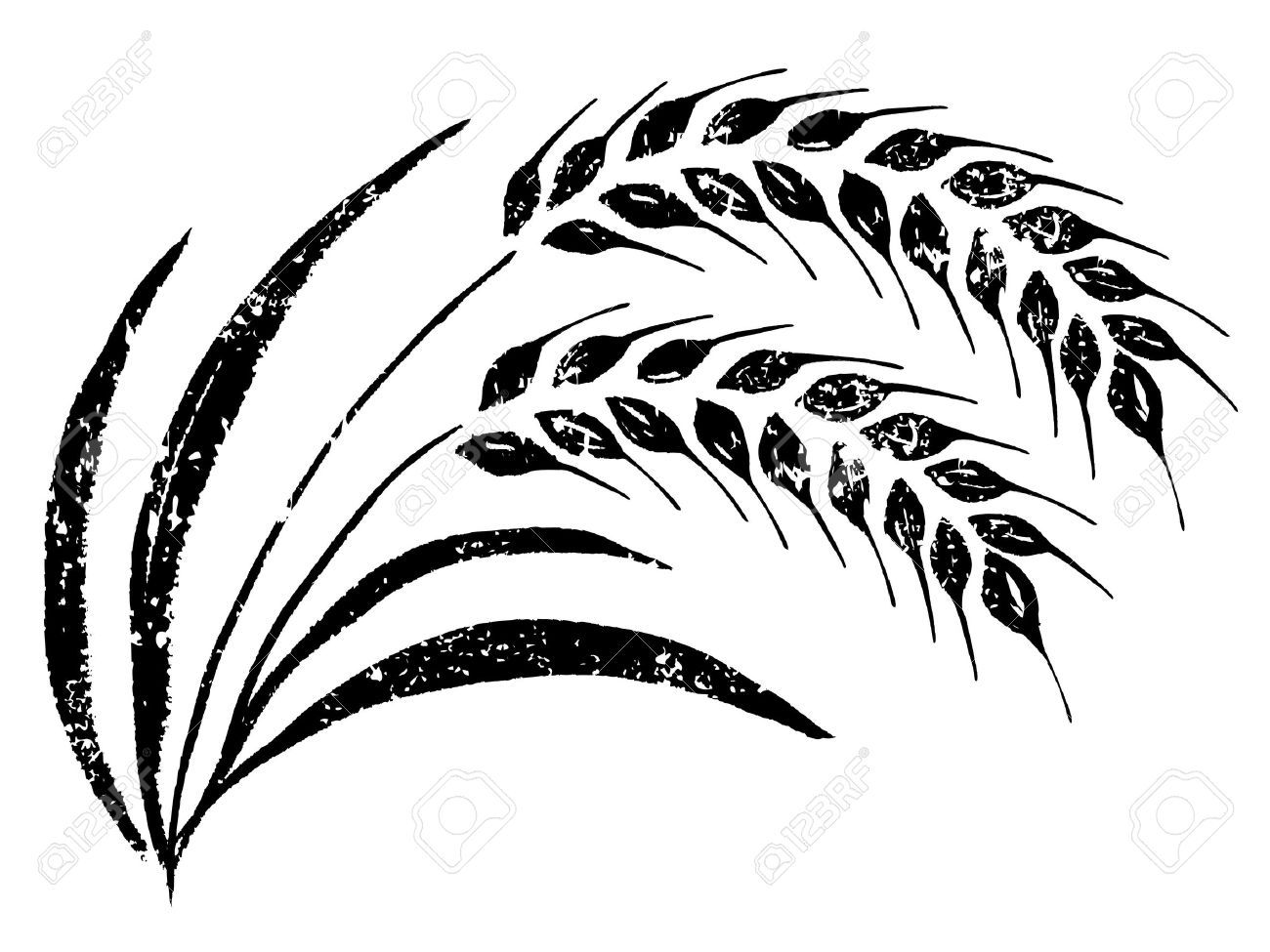 Hand Drawn Rice How To Draw Hands Plant Vector Grass Vector