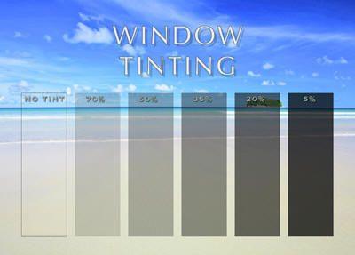 Types Of Window Tint Decorative Window Film Window Decor Window Film
