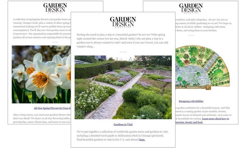 Newsletter Samplesgarden Designcalimesa Ca Garden Design Garden Design Magazine Outdoor Gardens Design