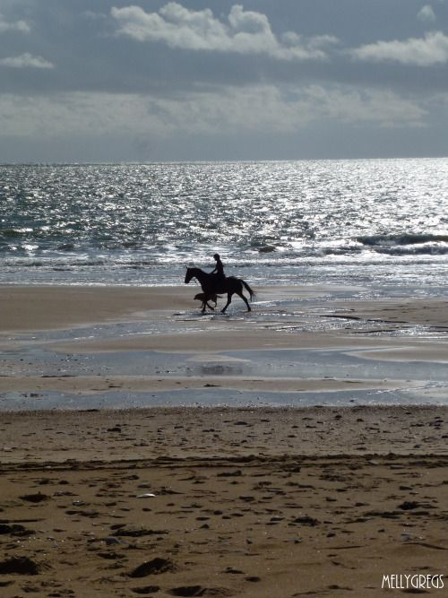*Beach Rider - Les Conches, Vendee, France