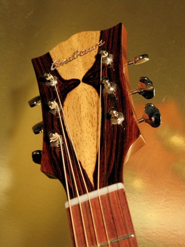 guitar luthier aaron andrews guitar luthiers guitar bass guitar kit archtop guitar. Black Bedroom Furniture Sets. Home Design Ideas