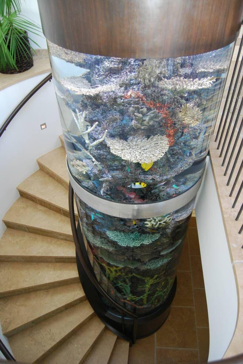 Home Aquarium Design Ideas: Aquarium Columns - I Want One At Home.