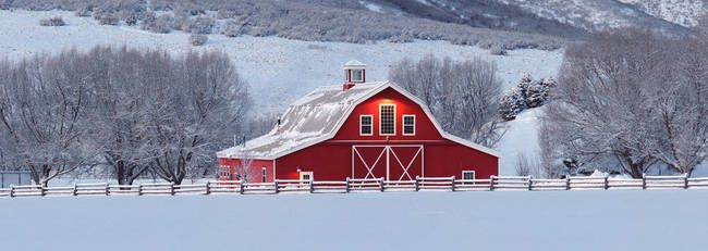 Barn Winter Scenes Panorama Of Idyllic Red Barn In A Wintery Ranch Scene Barn Painting Snow Scenes Sale Artwork
