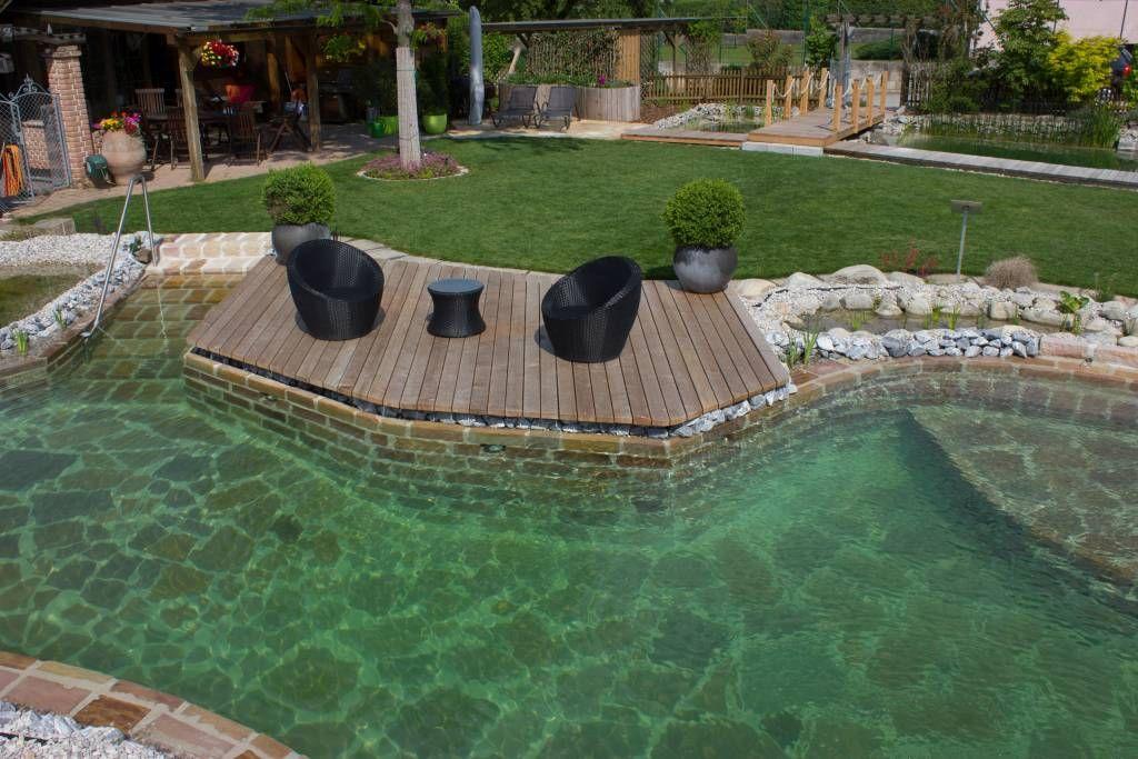 schwimmteich basic gartengestaltung zangl naturpool pinterest schwimmteich g rten und. Black Bedroom Furniture Sets. Home Design Ideas