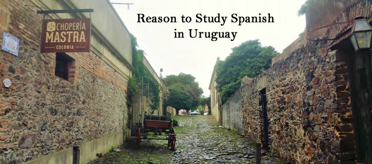 Reasons to Study Spanish in Uruguay! #latinamericatravel