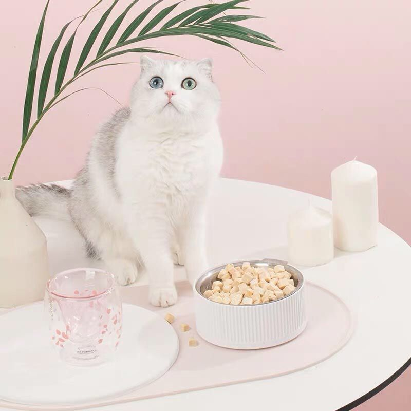 [ New Arrival ]  Fretting over daily clean-ups after your furriend's meal? Furrytail Clean Food Mat is the perfect solution you are looking for!  - Complete the dining set with Bobowl Food Bowl!  -  Available in 2 colours at Creaturelandstore.com  . . .   #foodmat #ilovecat #catlovers #catlove #cat #cats #cats_of_instagram #catstagram #catmom #catlover #petstagram #petsofinstagram #catsofsingapore #sgpets #sgcats