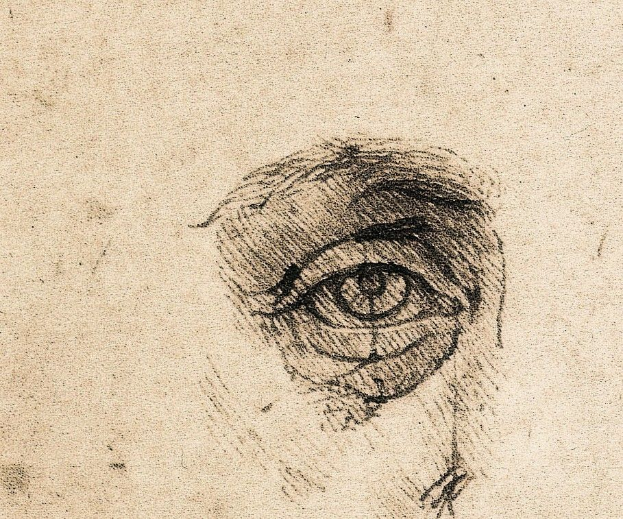 Contour Line Drawing Leonardo Da Vinci : Leonardo da vinci study of proportions detail ca