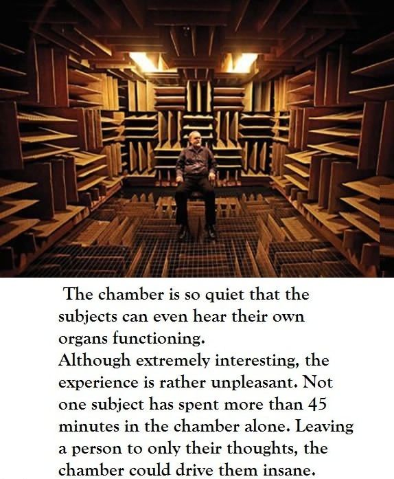 Spend 46 Minutes In Quot The World S Quietest Room Quot Dream